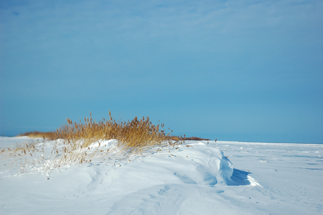 Winter has its own beauty: white, blue and gold. This is Mission Point.