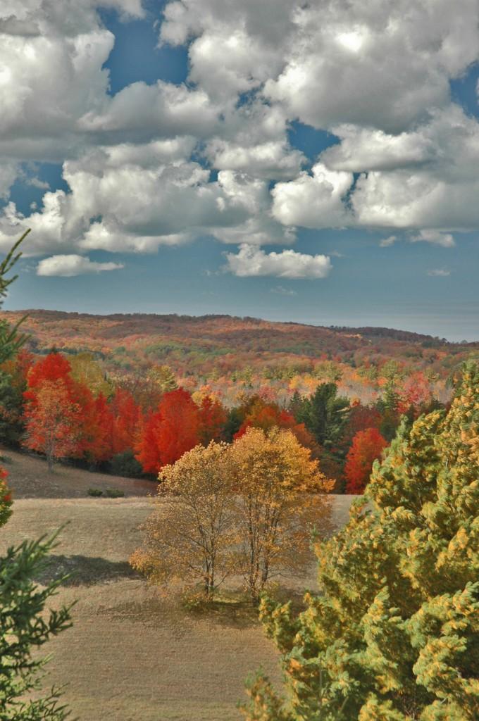 Looking west from Cedar.