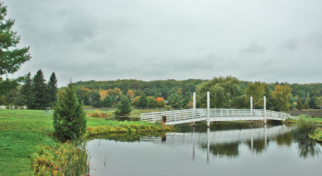 The welcoming bridge at Veronica Valley Park