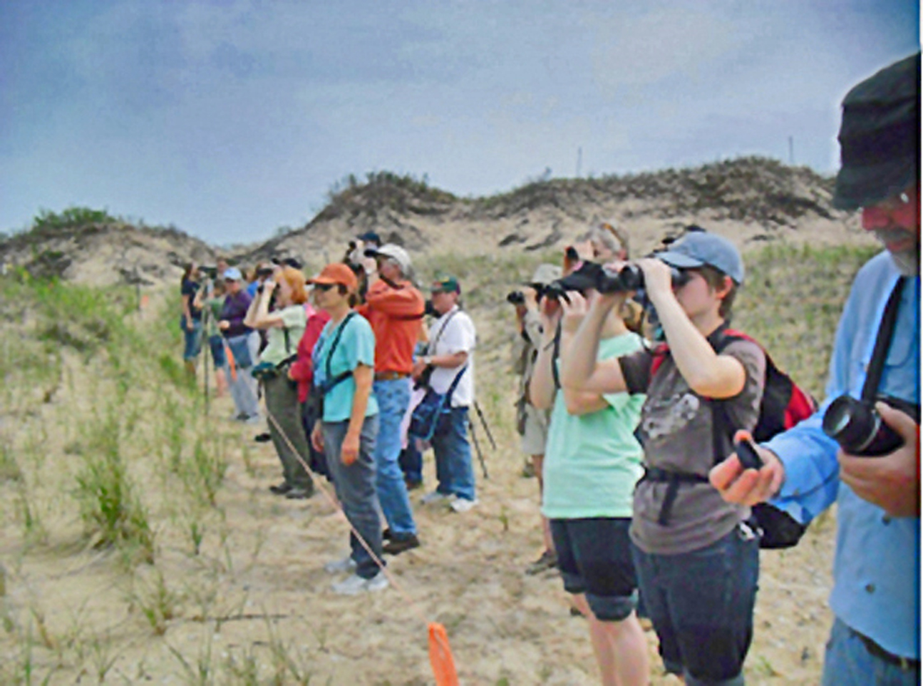 Birders checking out the plovers at Sleeping Bear