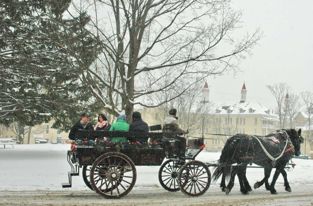 Horse-drawn carriage rides in the Village at Grand Traverse Commons.