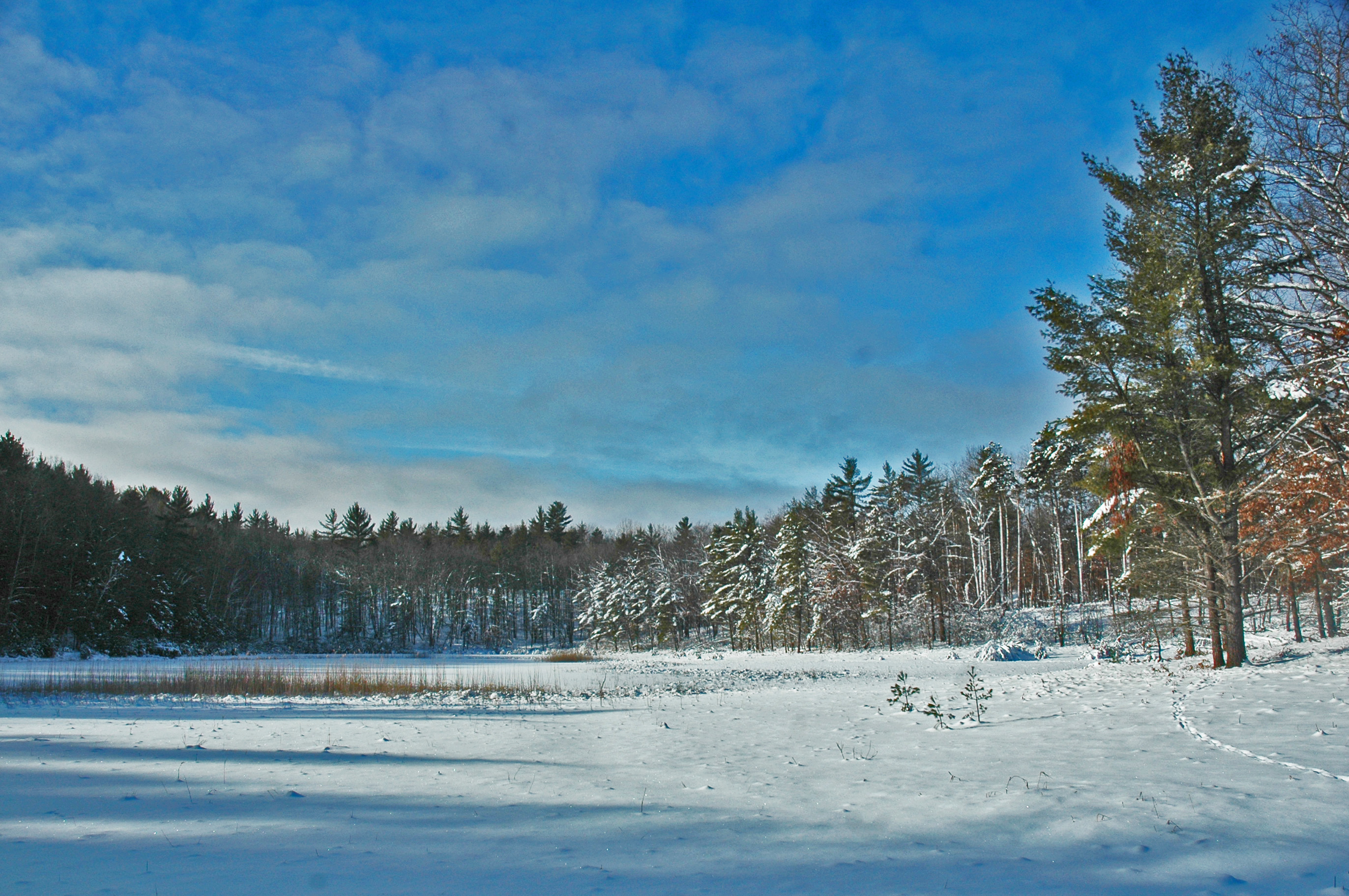 One of the smaller Sand Lakes -- this is where the trail started to get tricky...
