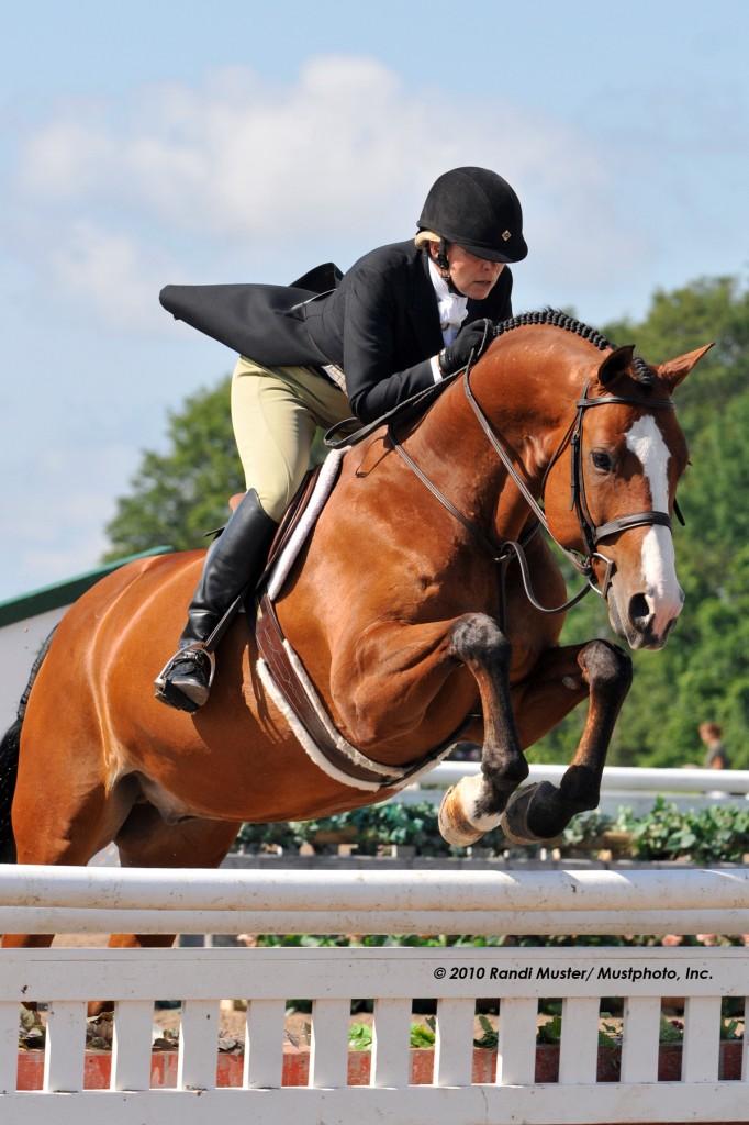 HorseShows2011 2