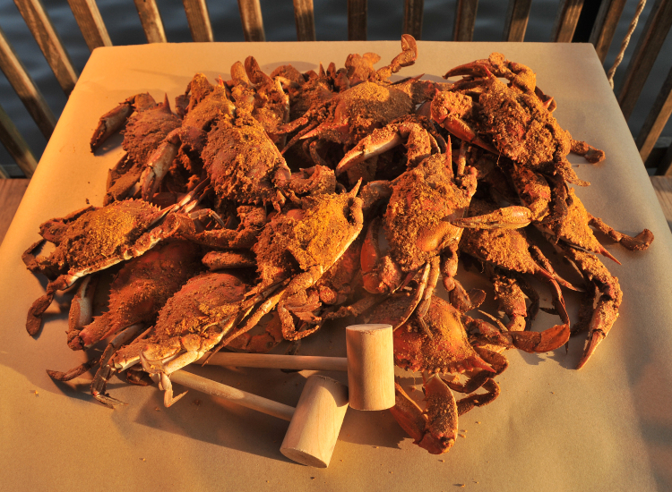Delaware Steamed Crabs