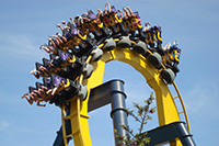Six Flags SM Image