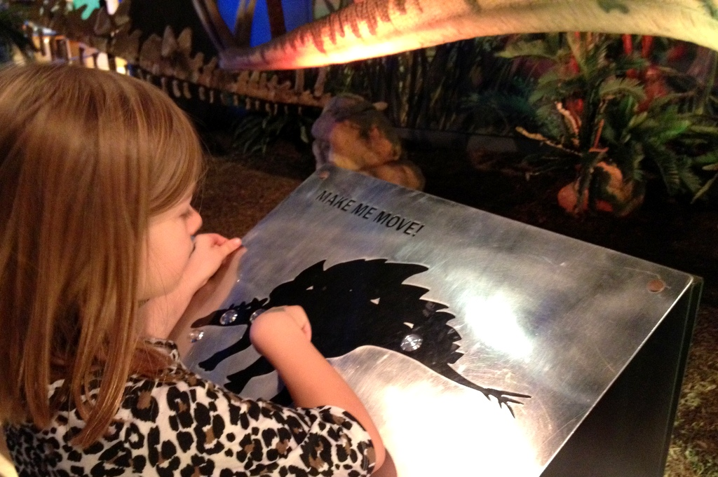 Stegosaurus Exhibit at GR Public Museum