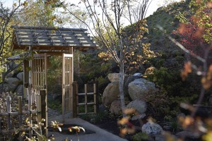 Teahouse gate in the Richard & Helen DeVos Japanese Garden