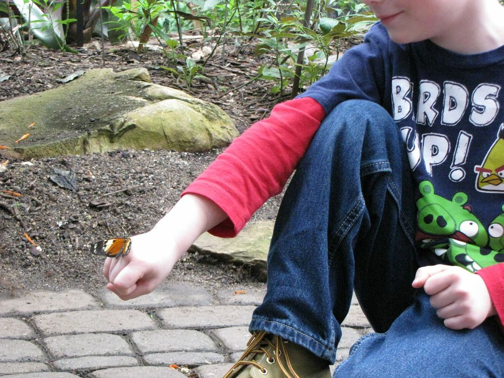 Holding a Butterfly at Frederik Meijer Gardens