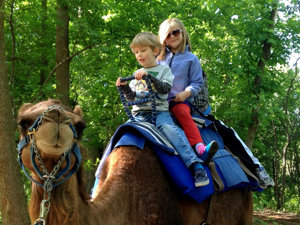 Children riding a camel at the John Ball Zoo in Grand Rapids, MI