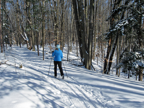 Woman skiing in Pigeon Creek Park in Grand Rapids