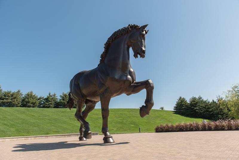 American Horse photo by Jeff Denapoli