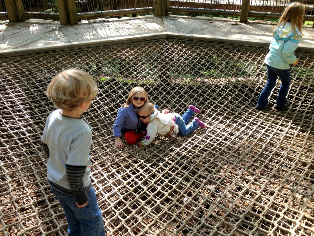 Children playing on the net at the tree outpost play area at the John Ball Zoo