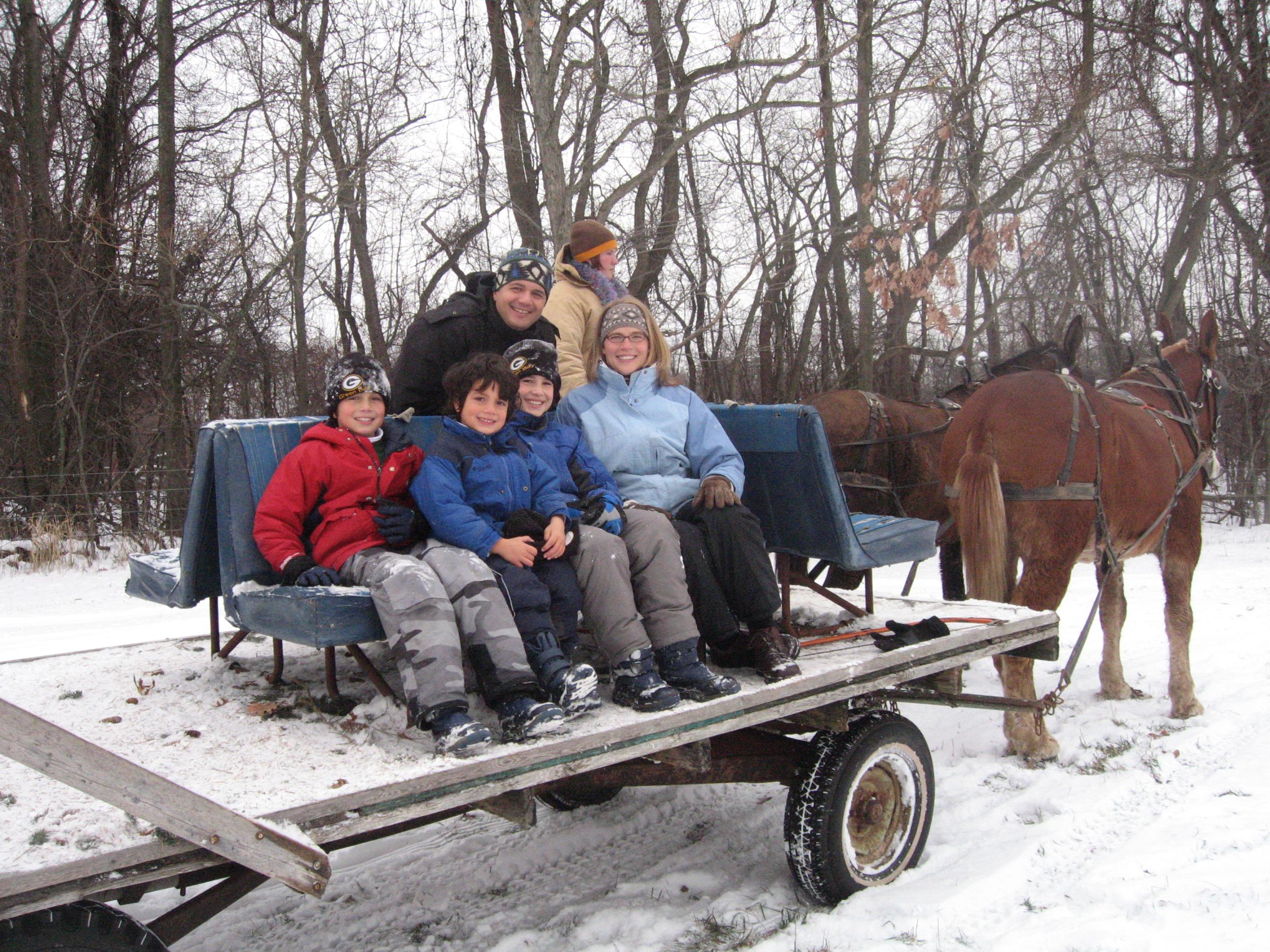 Christmas Tree Farms In Grand Rapids Mi