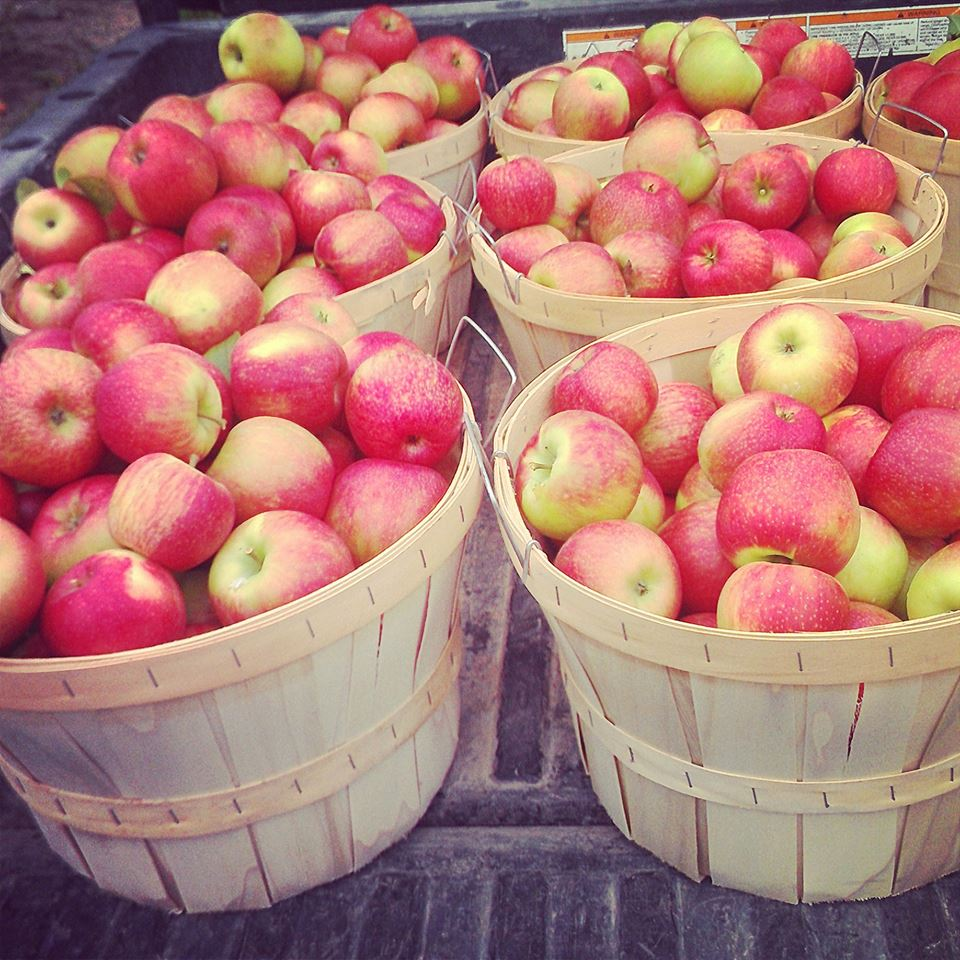 Photo Courtesy of Sietsema Orchards