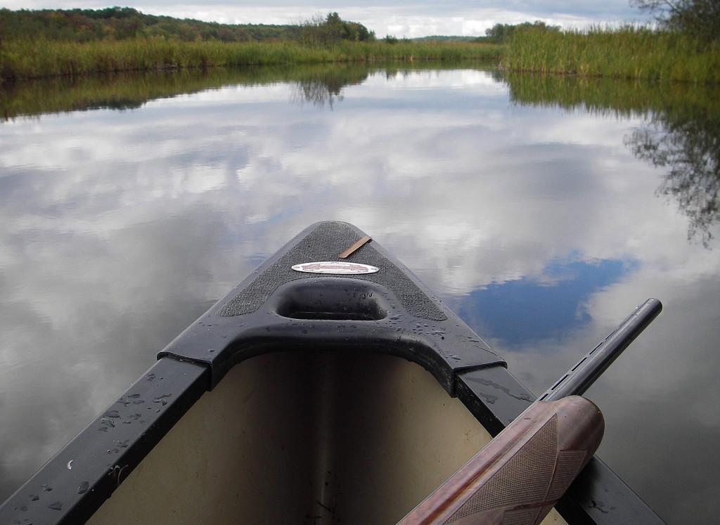 West Michigan Marsh