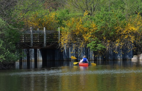 canoeing on a river in Ann Arbor
