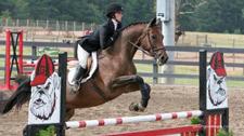 UGA Equestrian
