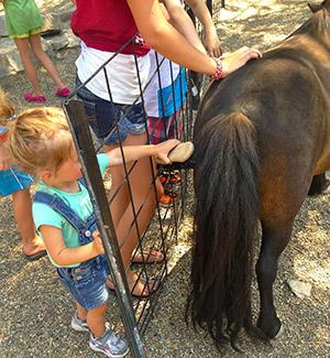 Omaha Zoo - young mama tales