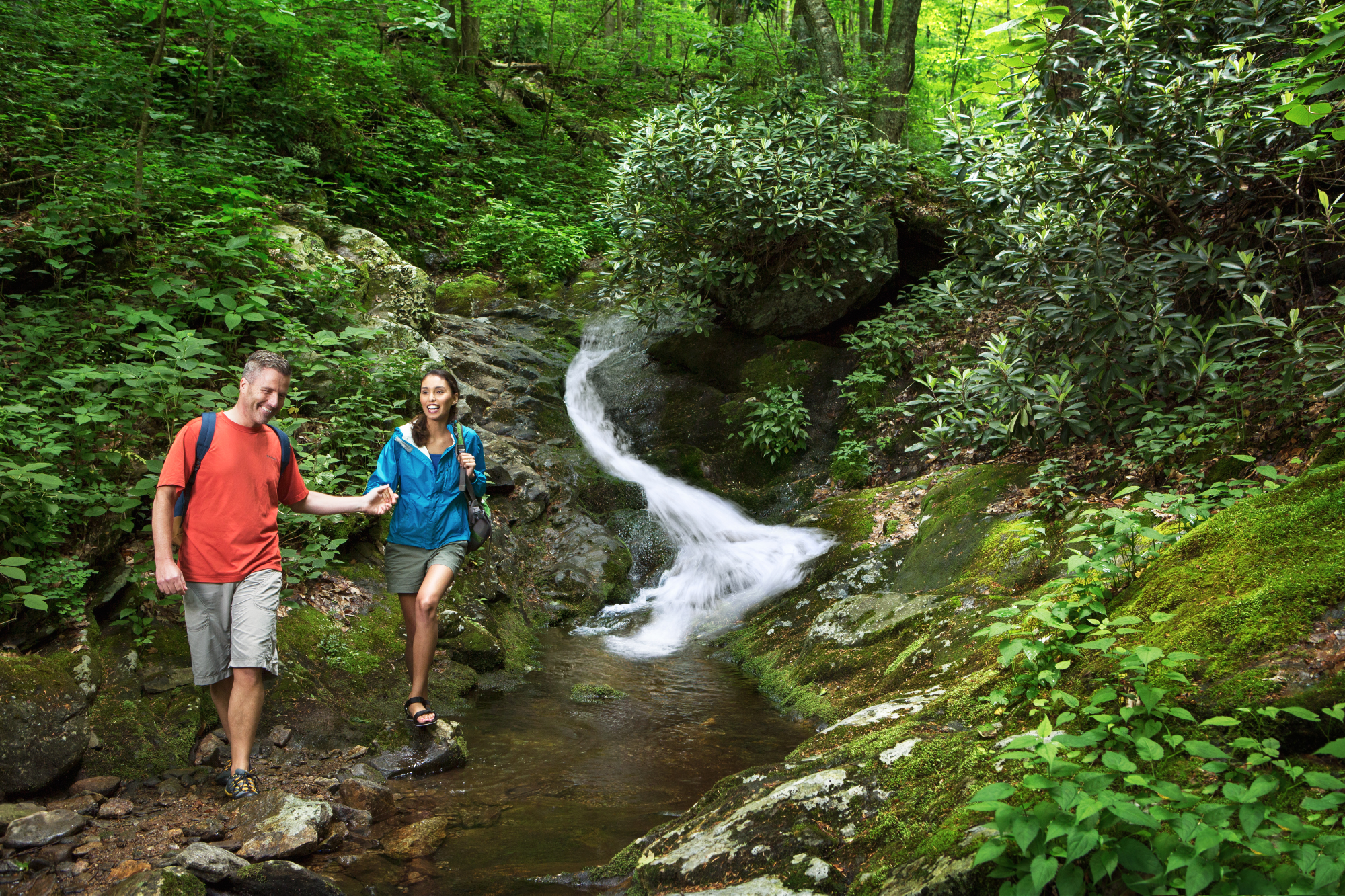 Spring asheville ncs official travel site spring summer dhlflorist Image collections