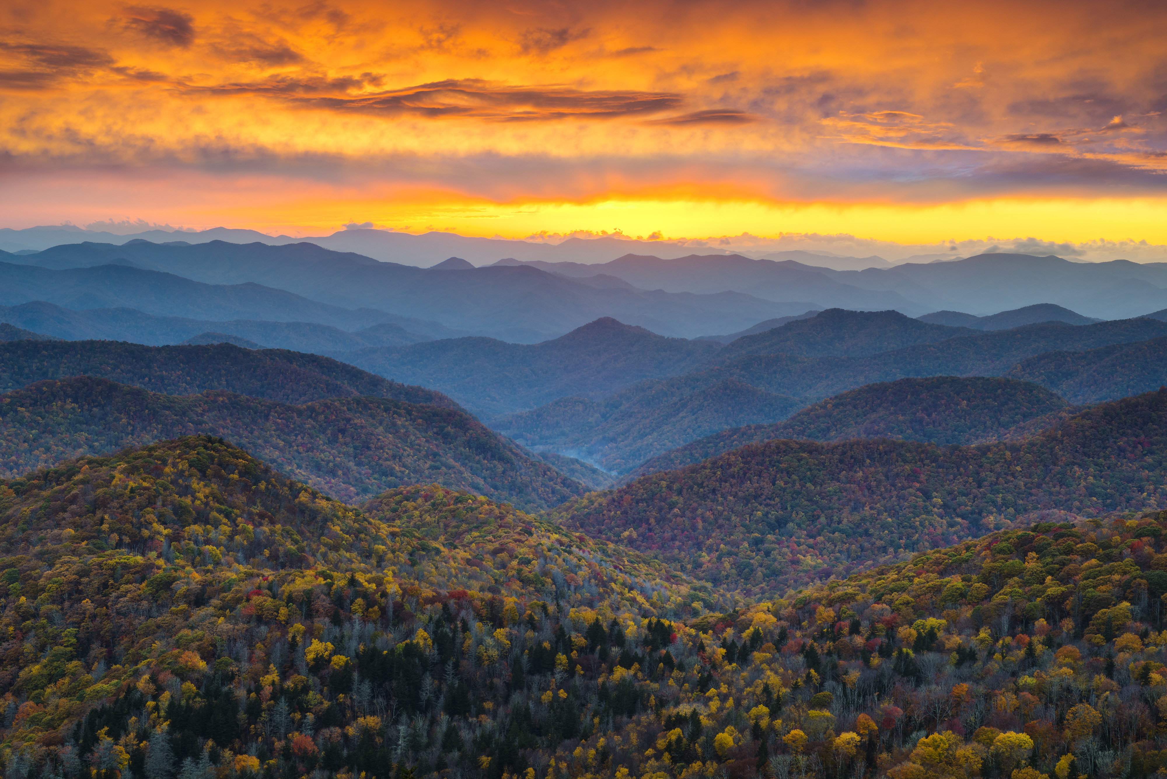Fall Forecast And Weekly Fall Color Report Asheville Nc