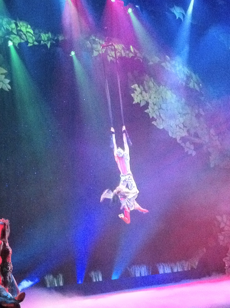 Cirq Dreams at Busch Gardens Tampa Bay Flying Act