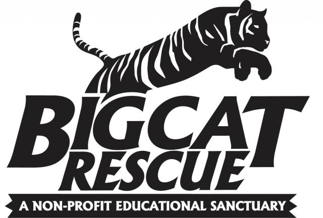 Get the Big Cat Rescue App today!