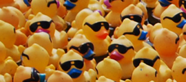 Lucky Ducky Derby!