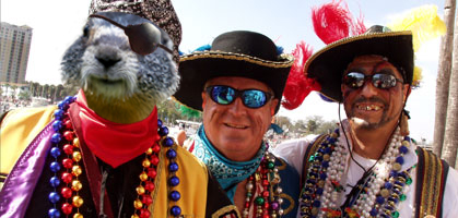 Punxsutawney Phil at The Seminole Hard Rock Gasparilla Pirate Festival this Past Weekend