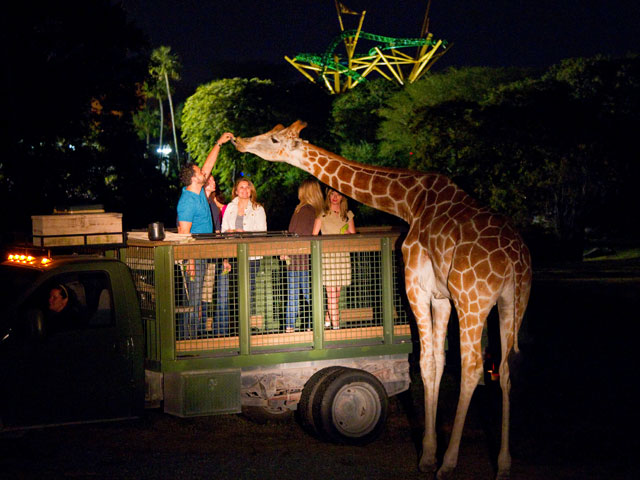 Make Busch Gardens Your One Stop Shopping Destination for the