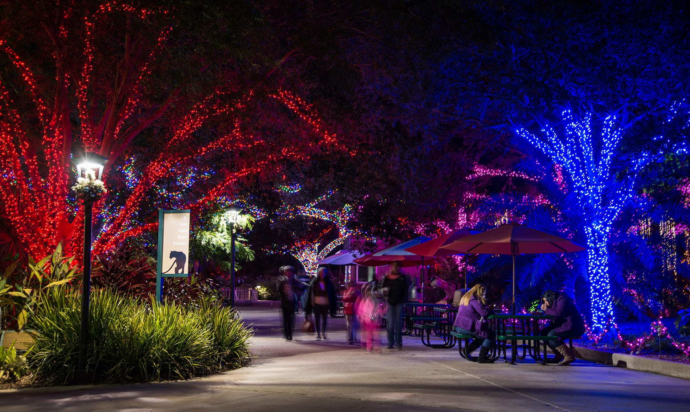 Couples Walking Through Zoo Lights