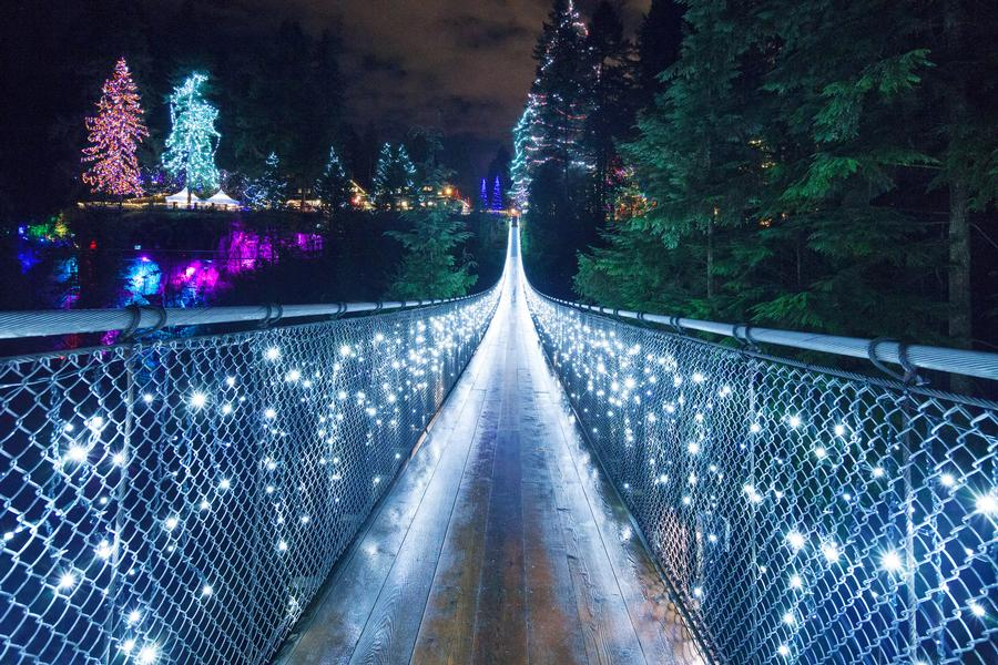 Capilano Suspension Bridge Canyon Lights