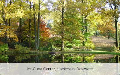 Mt Cuba Center, Hockessin, Delaware