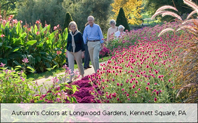 Autumn's Colors at Longwood Gardens, Kennett Square, PA
