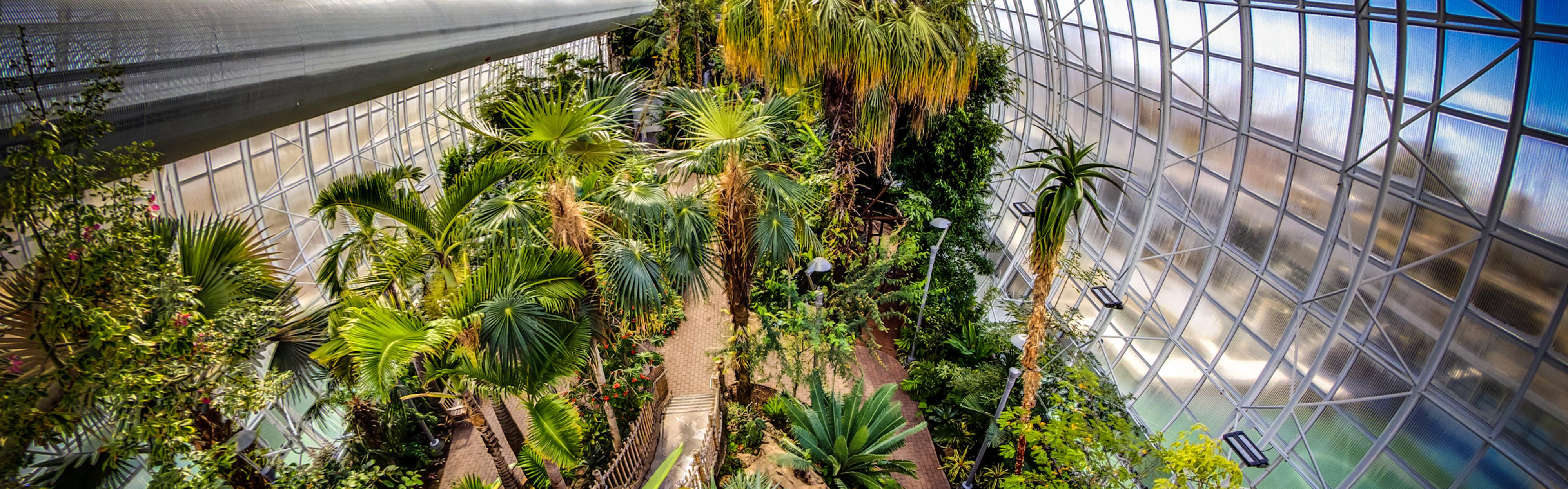 Myriad Botanical Gardens 16:5