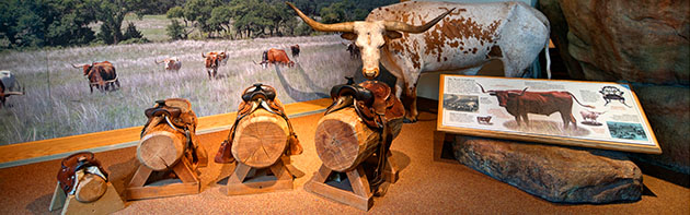 Exhibit at National Cowboy & Western Heritage Museum