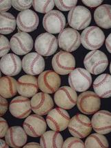 Lansing Spring Baseball Season Begins