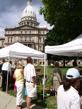 Lansing Festivals by Michigan State Capitol