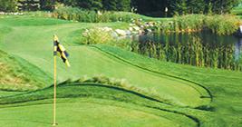 Lansing Michigan Golf at Little Hawk