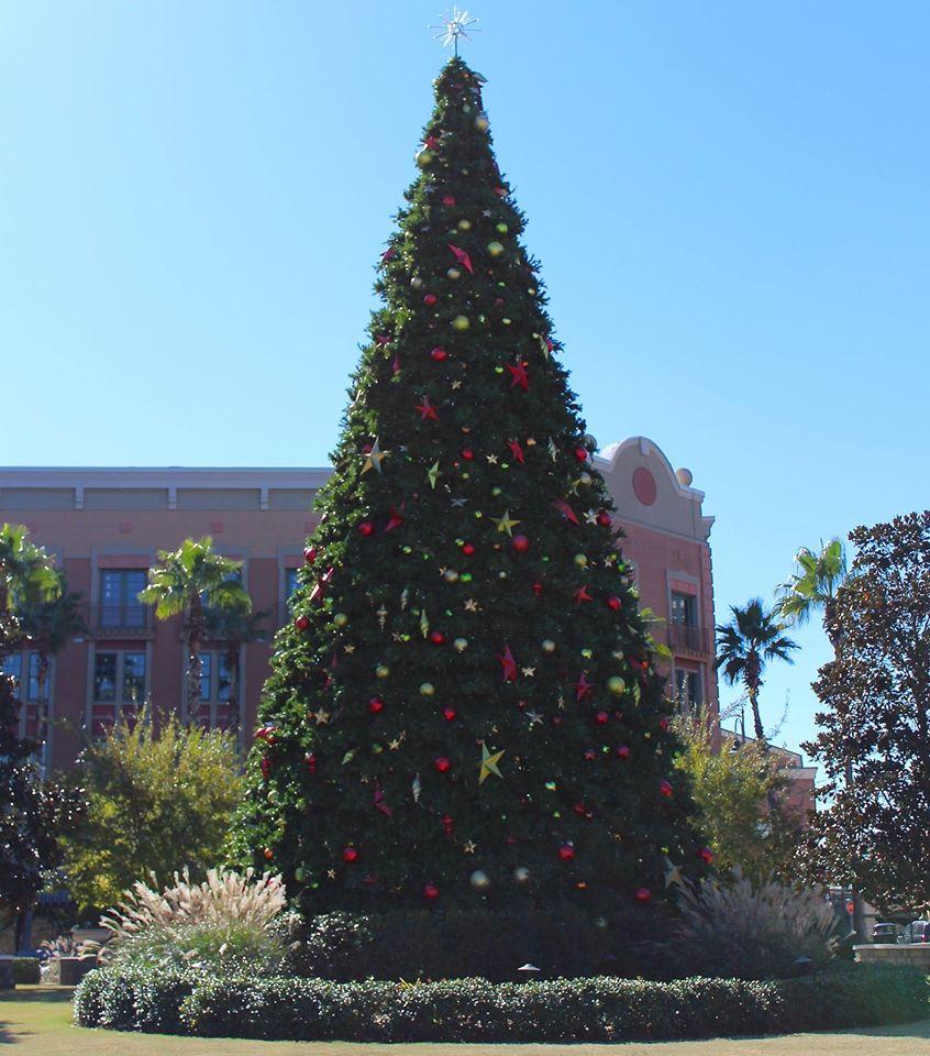Christmas Tree Locations