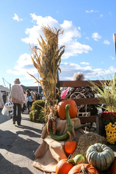 fall2015_credit Discover Newport-0344