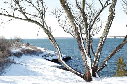winter-escape