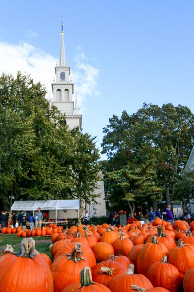 fall2015_credit Discover Newport-0379