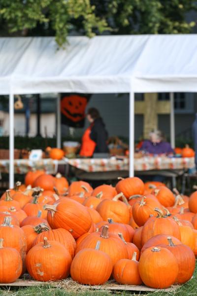 fall2015_credit Discover Newport-0398