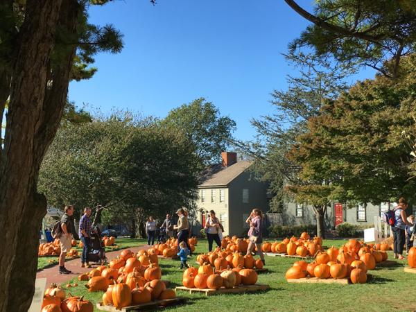 fall2015_credit Discover Newport-4577