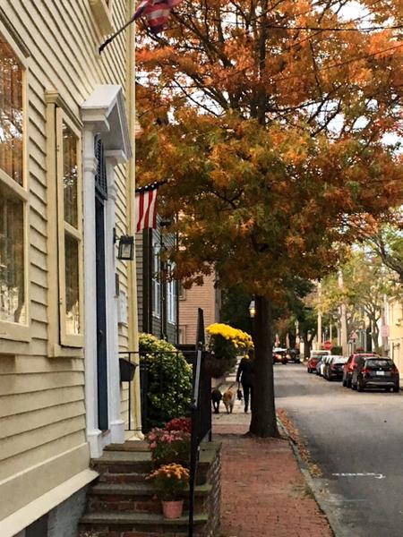 fall2015_credit Discover Newport-4920