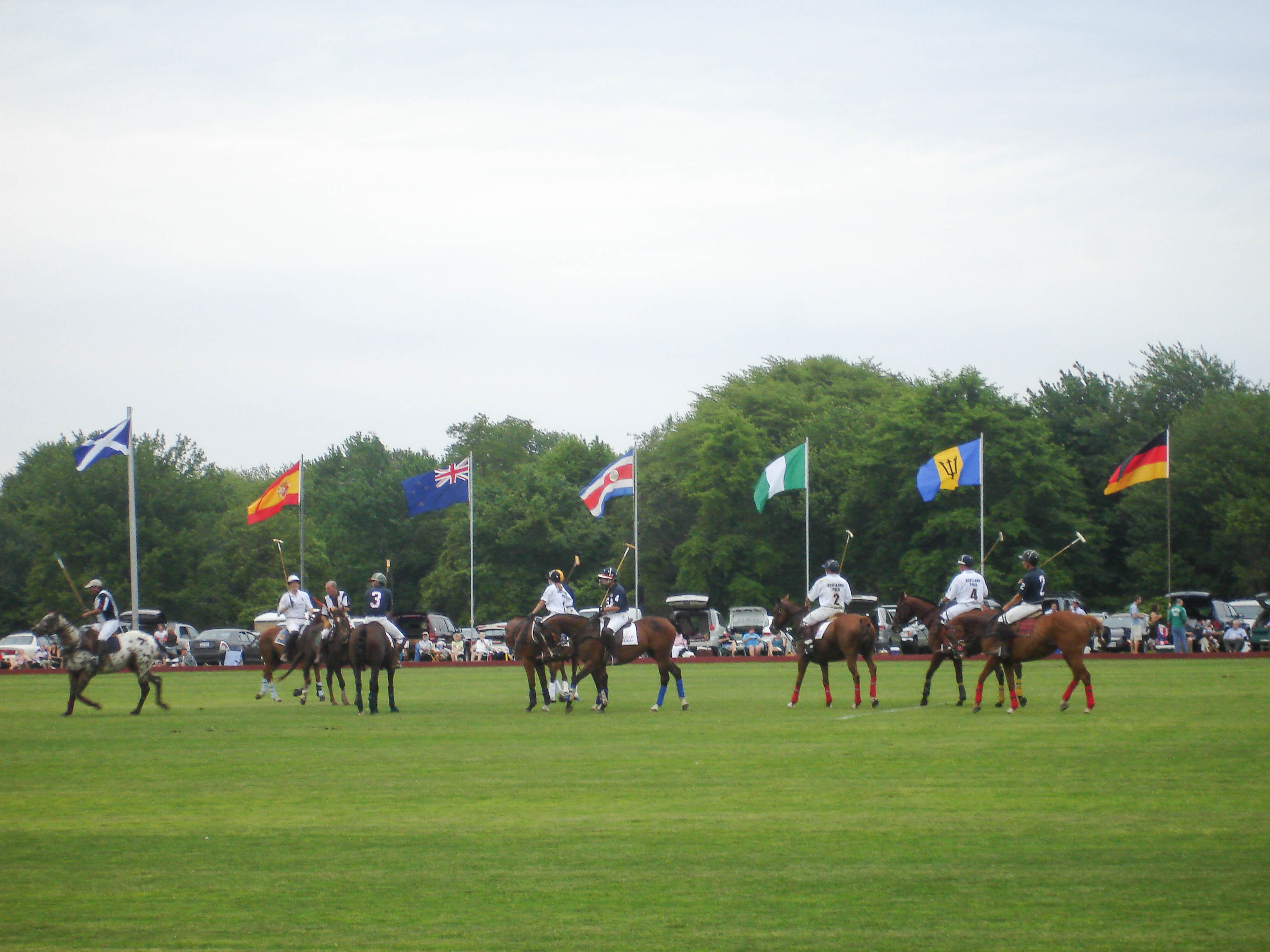 newport polo flags_credit Newport International Polo Series