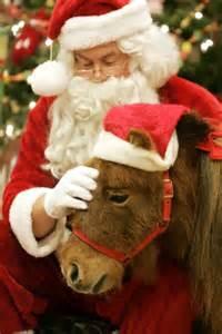 Santa with Ponies