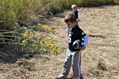 Checking out the beautiful flowers in the Prairie Maze