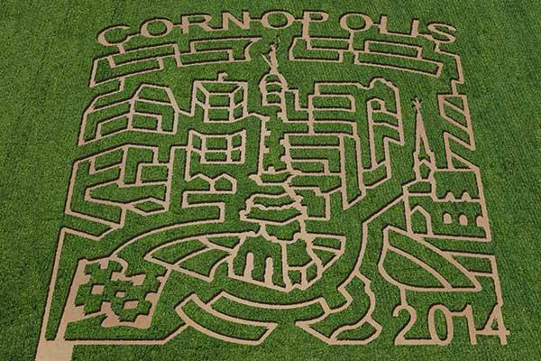 Beasley's 2014 Corn Maze design: Cornopolis