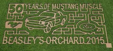 Heartland Apple Festival, Beasley's Orchard, corn maze, Mustang Muscle, Danville, Indiana
